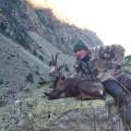 Hunting Gallery 109