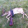 Hunting Gallery 128