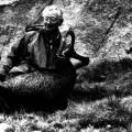 Hunting Gallery 38